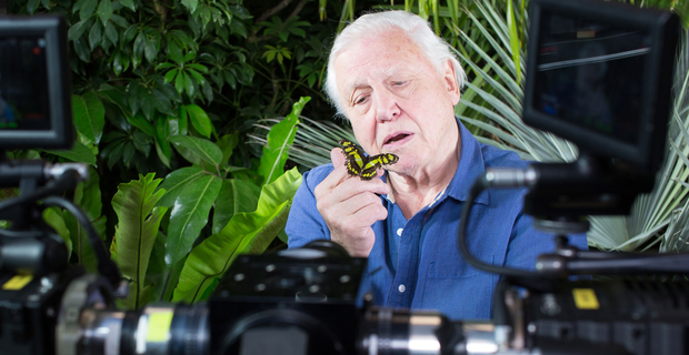 David-Attenborough-camera