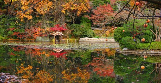 Ryoanji-Temple-Japan