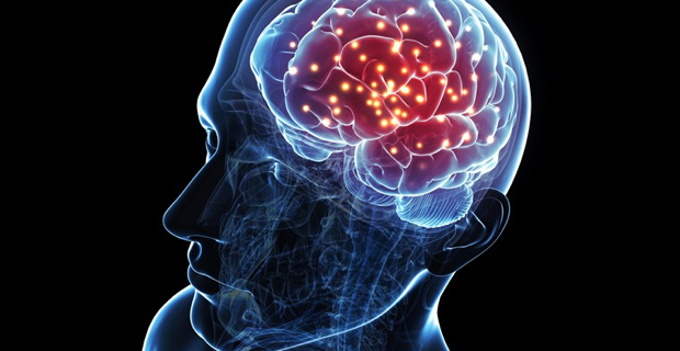 brain-electroencephalogram